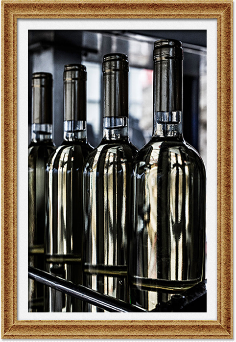 immagine-vino